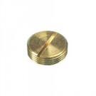 Brass Slotted Plug
